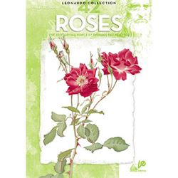 Picture of 042 ROSES