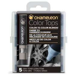 Picture of CHAMELEON 5 COLOUR TOPS - GREY