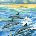 Picture of PAINT BY NO.JUNIOR DOLPHINS