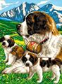 Picture of PAINT BY NO.JUNIOR ST BERNARDS