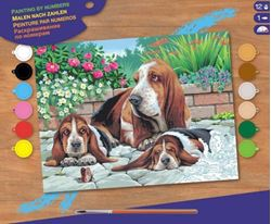 Picture of PAINT BY NO.SENIOR BASSET HOUNDS