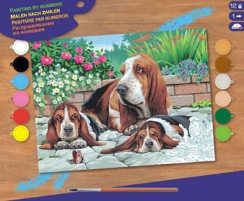 Picture of PAINT BY NUMBERS SENIOR BASSET HOUNDS
