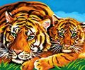 Picture of PAINT BY NO.SENIOR TIGERS