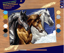 Picture of PAINT BY NO.SENIOR WILD HORSES