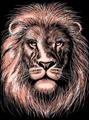 Picture of ARTFOIL COPPER LION
