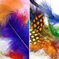 Picture of MIXED FEATHERS 6CM 50PCS