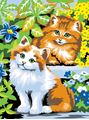 Picture of PAINT BY NUMBERS JUNIOR KITTENS